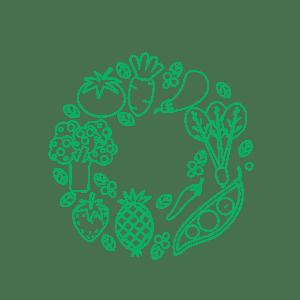 fruit_vector